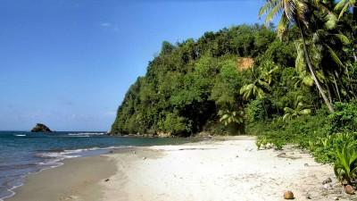 Dominica Portfolio