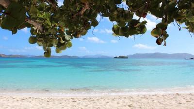 St. Kitts Portfolyo